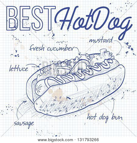 simple hot dog recipe with ketchup and mustard and salad image isolated on a notebook page