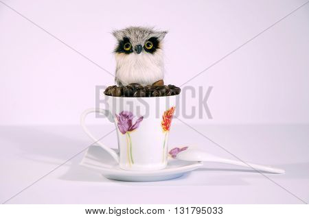 Owl on roasted coffee beans in porcelain cup