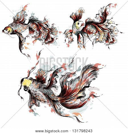 Collection of vector hand drawn goldfish in watercolor style painted by spots