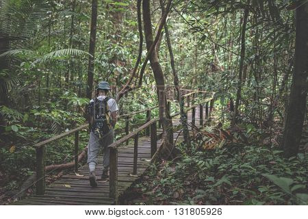 Backpacker Exploring The Majestic Jungle Of Kubah National Park, West Sarawak, Borneo, Malaysia.