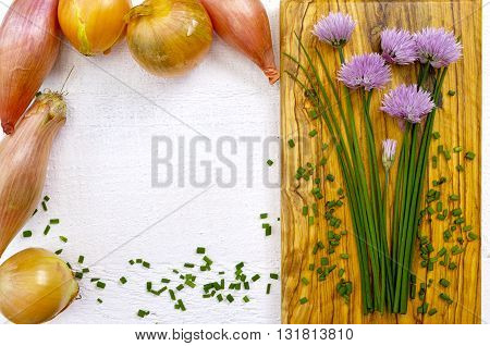 Fresh green blooming chives shallots and yellow onion on white and olive wood background