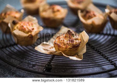 Freshly Baked Corncake On Cooling Tray