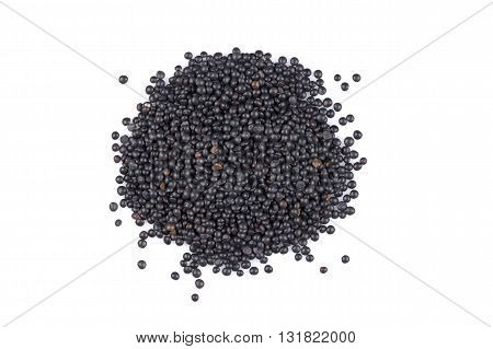 Beluga. Black Lentil On White