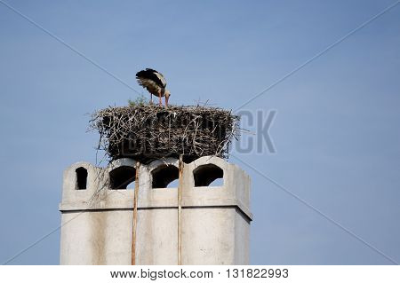 Stork in nest on chimney blue sky as background