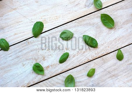 Leaves Of Basil On The Wooden Background