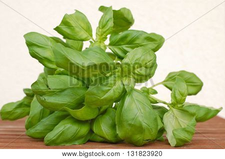 Basil On The Wooden Background