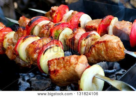 The Shish Kebab cooking on the Nature