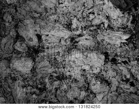 Extinct embers of bonfire detailed stock photo