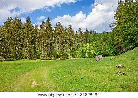 The Wental valley at Swabian Alps near Steinheim and Bartholomae