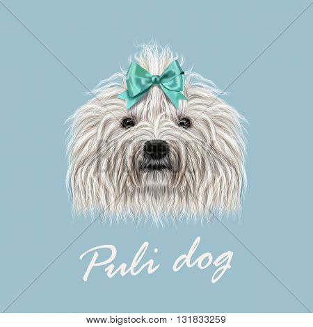 Vector Illustrated Portrait of Puli dog. Cute curly white face of domestic dog on blue background.