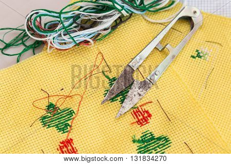 Cross Stitch Kit Of Fabric, Needle, Thread, Scissor And Chart
