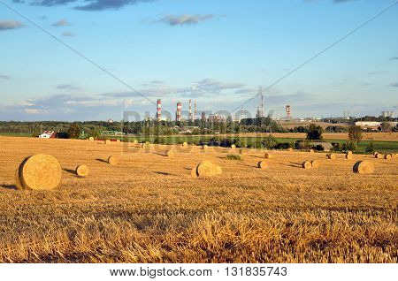 Wheat field with haystacks in the summer on a background of working plant.