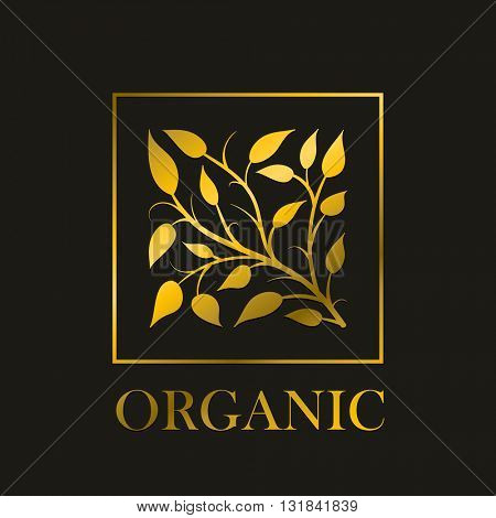 Vector simple round floral design. Gold branch and leaves stylize in square frame. Ideal for elegant invitations or natural cosmetics, raw foods etc.