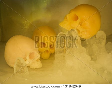 Still life with skull on ice, Concept cool