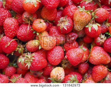Strawberry Fruits Detail