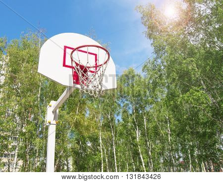 Basketball Hoop in the Park on a background of green trees