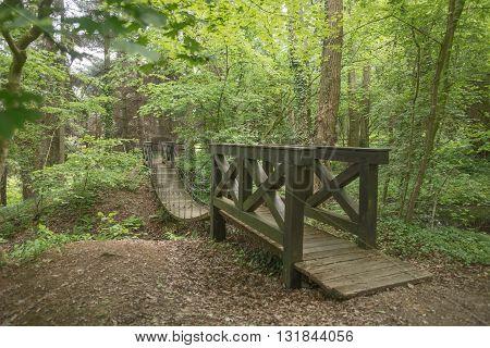 Suspension wooden bridge across the water in the park