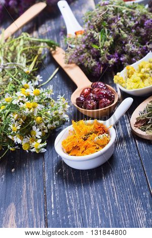 Herbs berries and flowers on color wooden table background