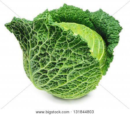 Fresh, raw savoy cabbage, isolated on white.