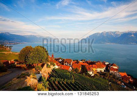 Sunset on vineyards of the Lavaux region over lake Leman (lake of Geneva) Switzerland - HDR Image