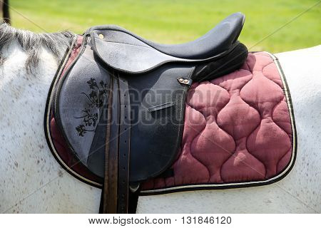 Leather saddle closeup details on horseback rural scene