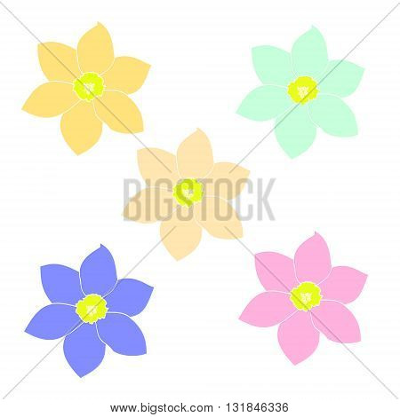 Flowers of different colors set of vector illustrations. Drawing flowers (daisies) on a white background. Colorful image