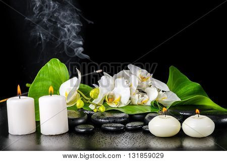 Beautiful Spa Concept Of Blooming White Orchid Flower, Phalaenopsis, Green Leaf With Dew, Smoke Stic