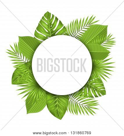 Illustration Summer Beautiful Postcard with Green Tropical Leaves for Design - Vector