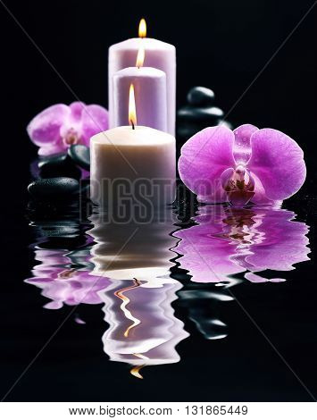 Composition of orchid, pebbles and candles in a row on dark background