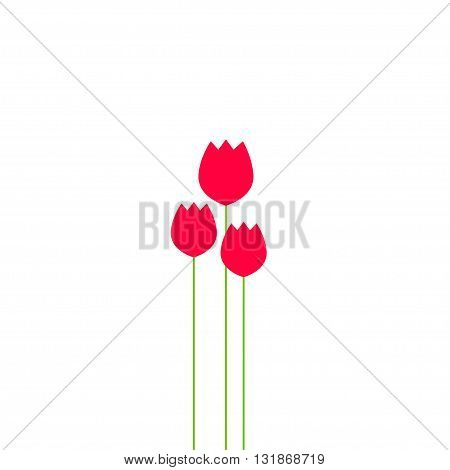 Abstract tulips flowers bouquet vector illustration tulip bulbs beauty banner poster modern simple flat design womans day print tulip red flower isolated on white background