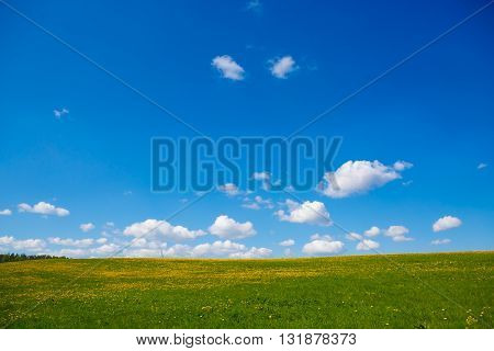 Rural views to the flower meadow and the blue sky, undulating terrain. Field with yellow dandelions to the horizon. Pastoral panorama of nature summer. Beautiful landscape of a Sunny day.