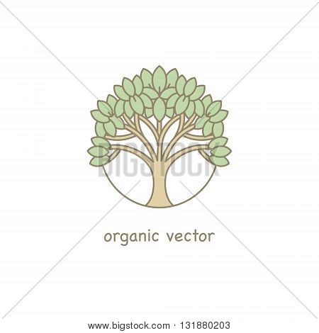 Vector Organic symbol. Modern illustration tree for packaging for natural products shops cosmetics clothing.