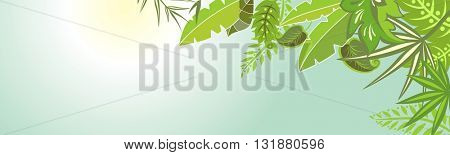 Horizontal banner with tropical leaves