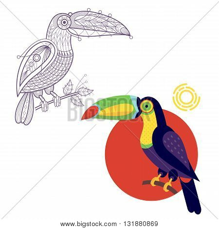 Bird toucan. Flat icon and template for adult coloring, zen tangle. Set of vector animals in different unusual style. Illustration collection of nature objects isolated on white background.