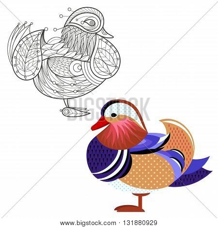 Bird mandarin duck. Flat icon and template for adult coloring, zen tangle. Set of vector animals in different unusual style. Illustration collection of nature objects isolated on white background.