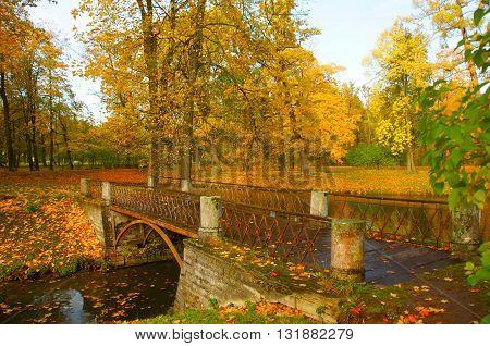 Clear autumn day in the Alexander Park in Tsarskoye Selo