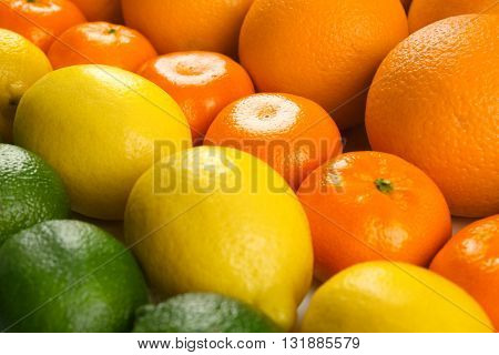 Colorful mixed citrus fruit  sorted and lined up in rows, close up
