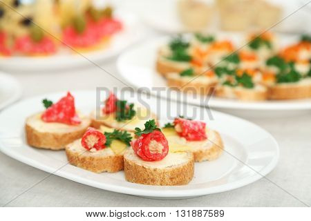 Set of cold snacks and canape, closeup