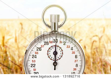 Stopwatch against wheat field background.Time concept