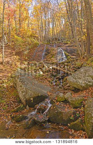 Hidden Cascade in the Fall Forest along the Blue Ridge Park way in Virginia