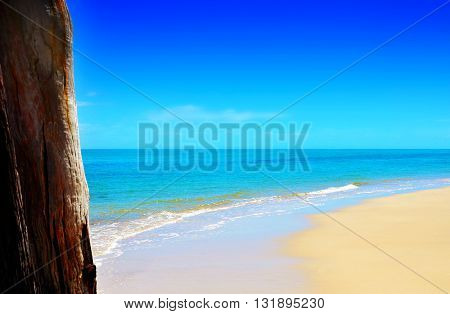 Summertime At The Beach Concept