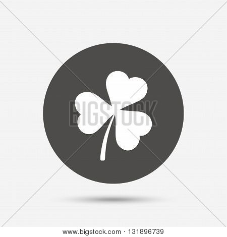 Clover with three leaves sign icon. Trifoliate clover. Saint Patrick trefoil symbol. Gray circle button with icon. Vector