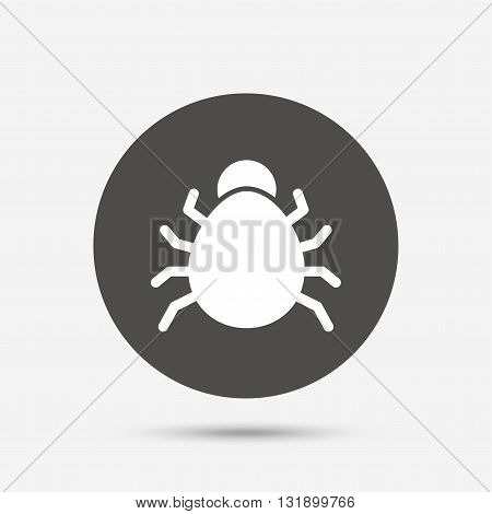 Bug sign icon. Virus symbol. Software bug error. Disinfection. Gray circle button with icon. Vector