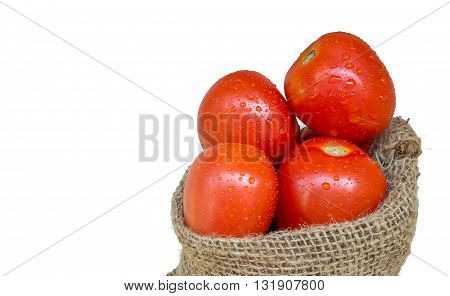 Tomatoes in the hemp sack with white background