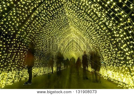 Sydney Australia - 2016 May 27: Annual outdoor lighting festival Vivid Sydney: Festival of Light Music and Ideas. Cathedral of Light light installation in The Royal Botanic Garden
