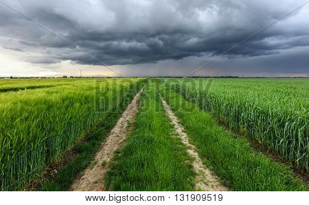 Storm clouds over a field and road