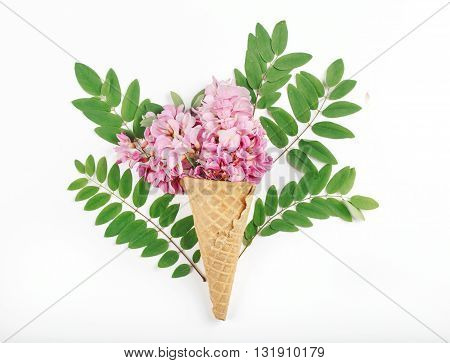 Cone with acacia flowers in acacia leaves on white background. Top view. Flat lay