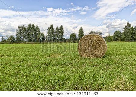 Haystack on a green field sunny summer day