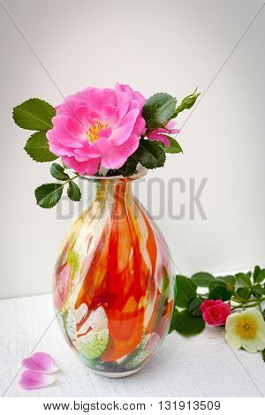 Small cololfrul glass vase with pink wild roses on white background