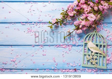 Background with elegant pink flowers on blue wooden planks. Flat lay. Selective focus. Place for text.